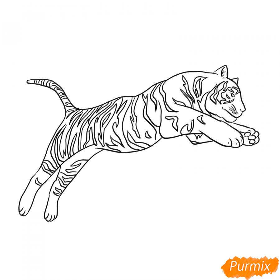 Рисуем белого тигра в прыжке - шаг 5