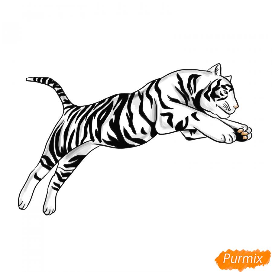 Рисуем белого тигра в прыжке - шаг 8