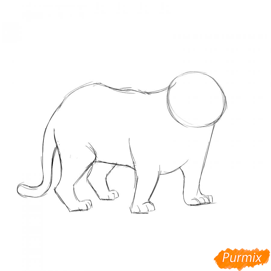 Рисуем черного тигра карандашами - шаг 3