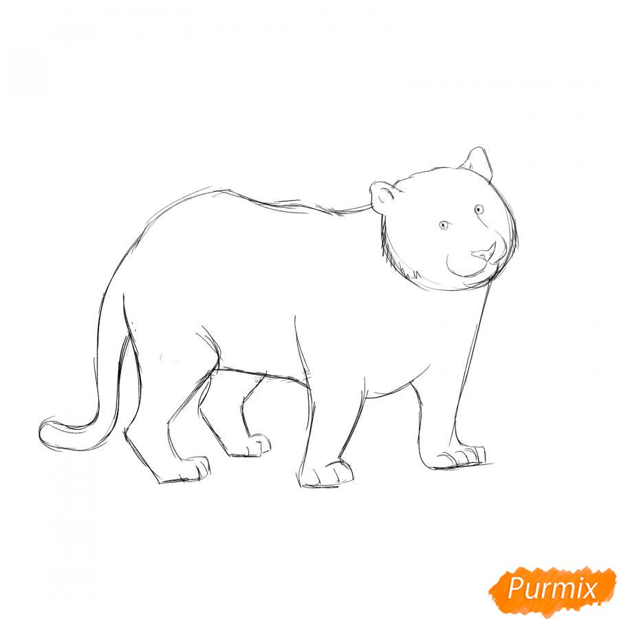 Рисуем черного тигра карандашами - шаг 4