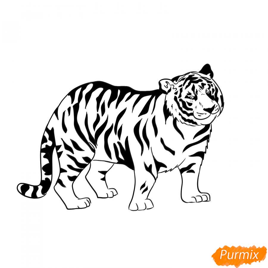 Рисуем черного тигра карандашами - шаг 8