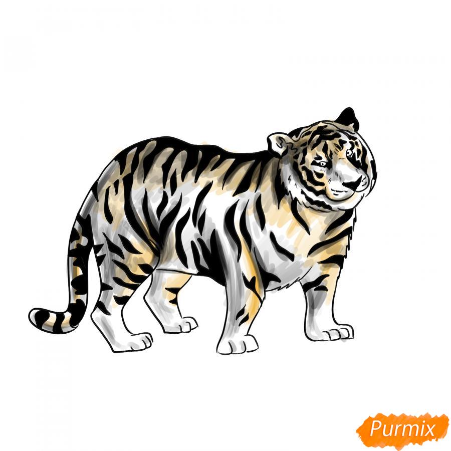 Рисуем черного тигра карандашами - шаг 9