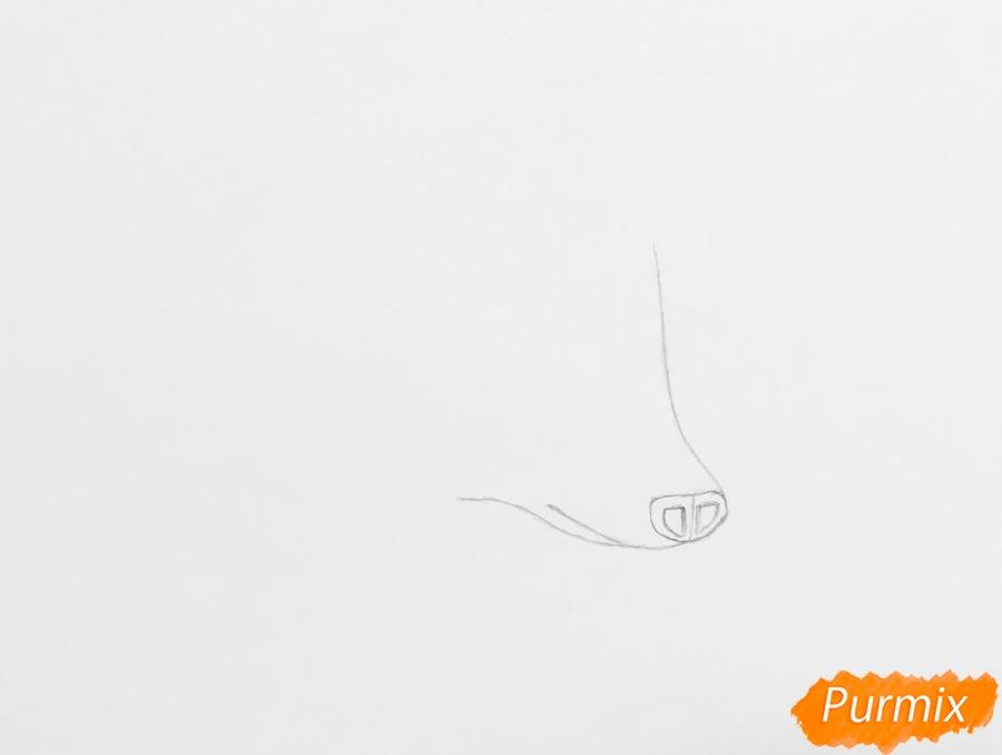 Рисуем ёжика на полянке цветными карандашами - шаг 1