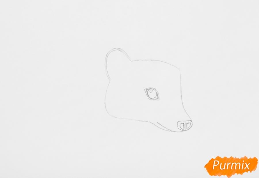 Рисуем ёжика на полянке цветными карандашами - шаг 2