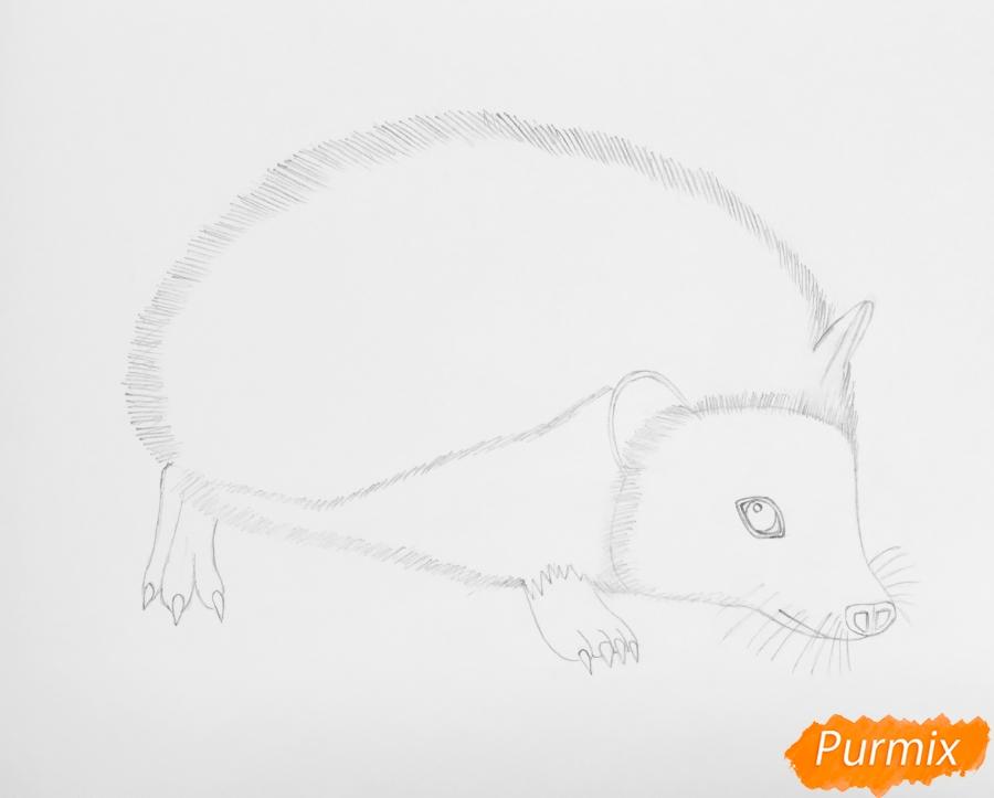 Рисуем ёжика на полянке цветными карандашами - шаг 4