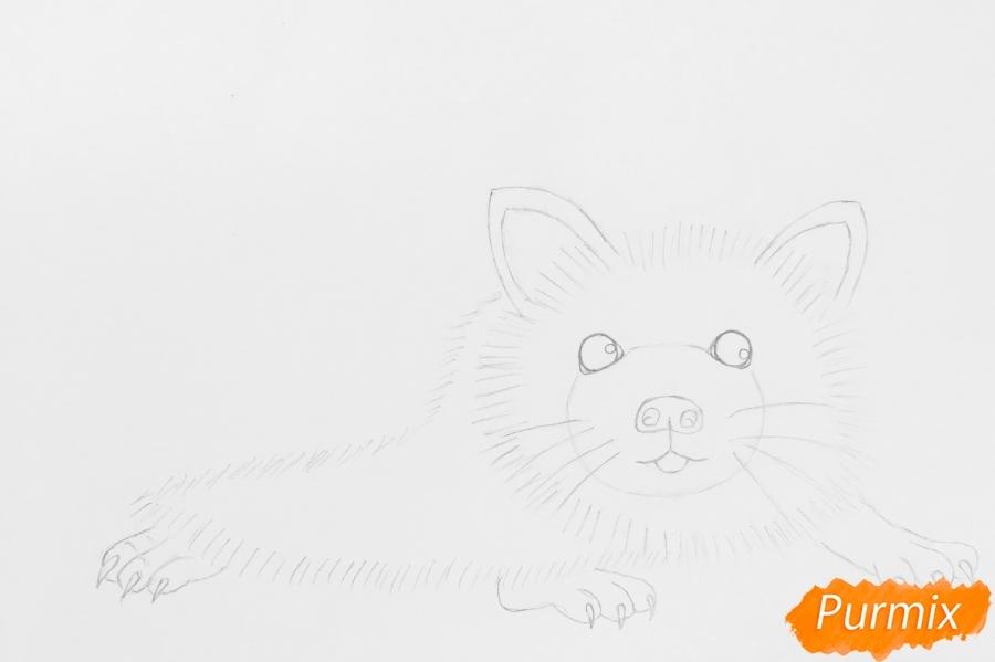 Рисуем ёжика простыми карандашами - шаг 3