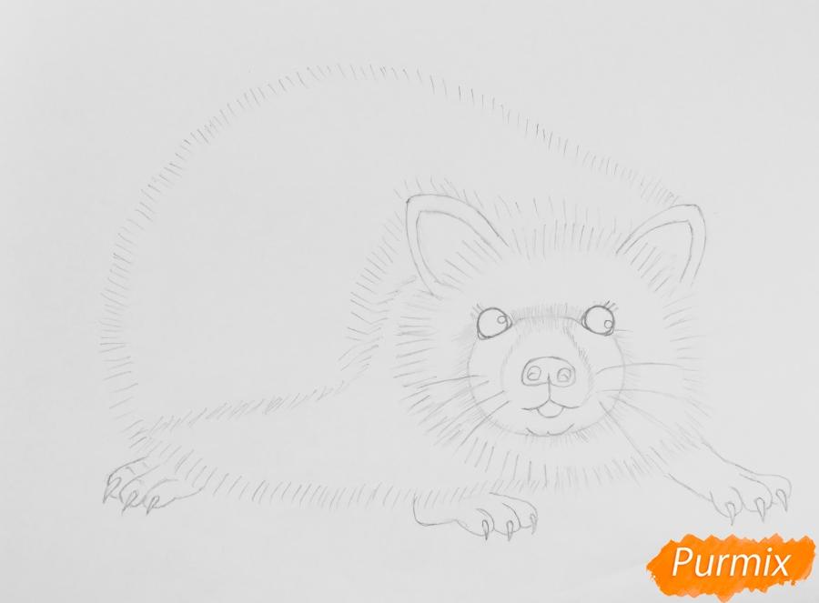 Рисуем ёжика простыми карандашами - шаг 4