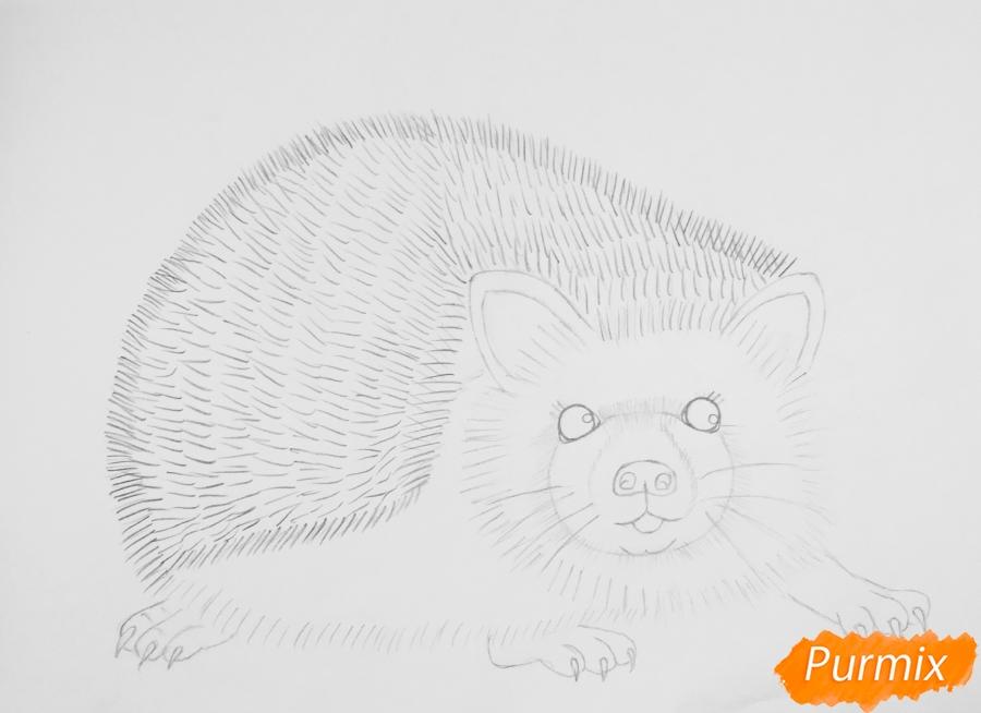 Рисуем ёжика простыми карандашами - шаг 5