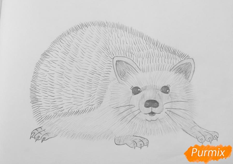 Рисуем ёжика простыми карандашами - шаг 7