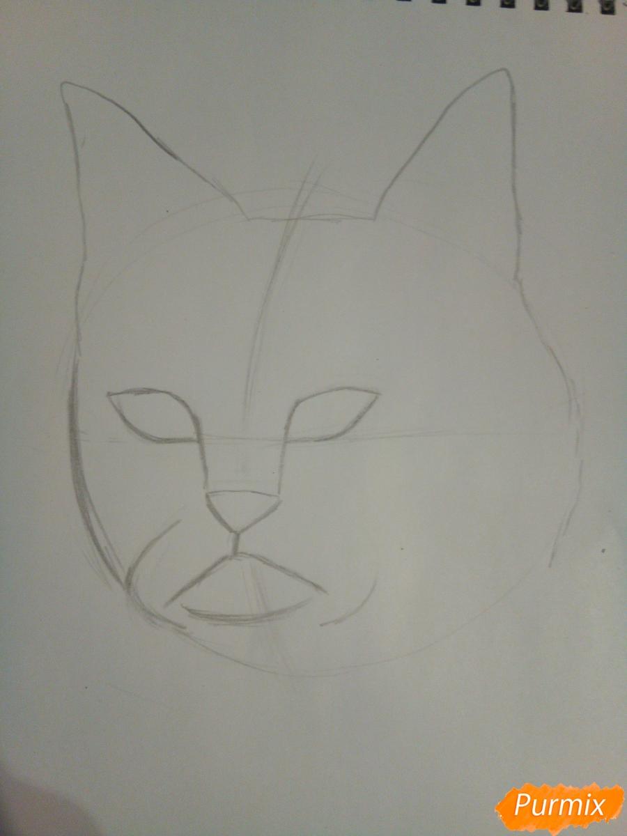 Рисуем голову сердитого кота простым - шаг 4