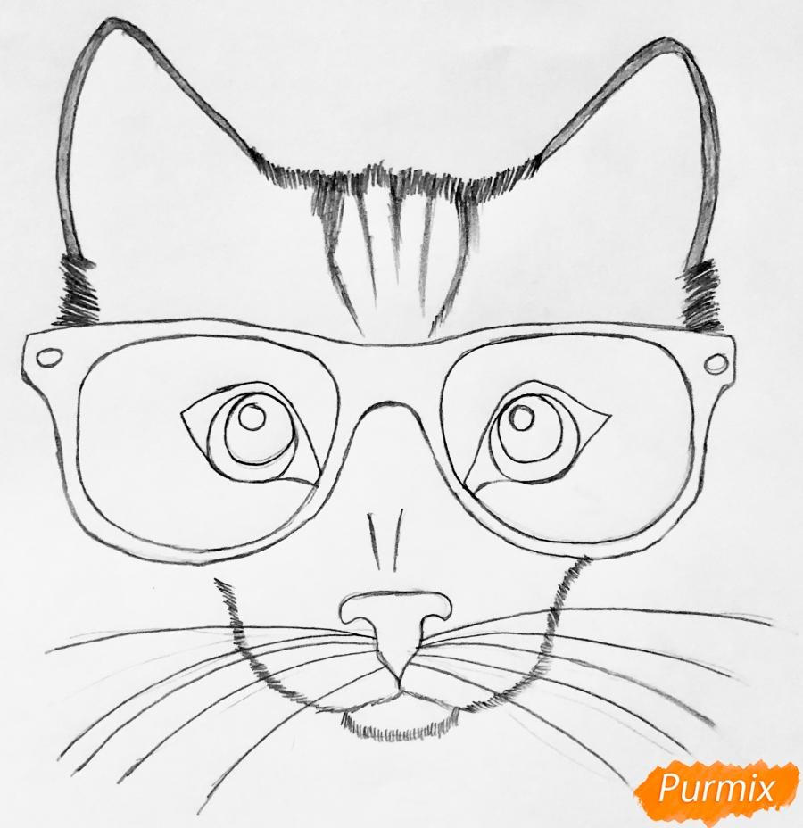 Рисуем портрет кошки в красных очках и с бантом - шаг 3