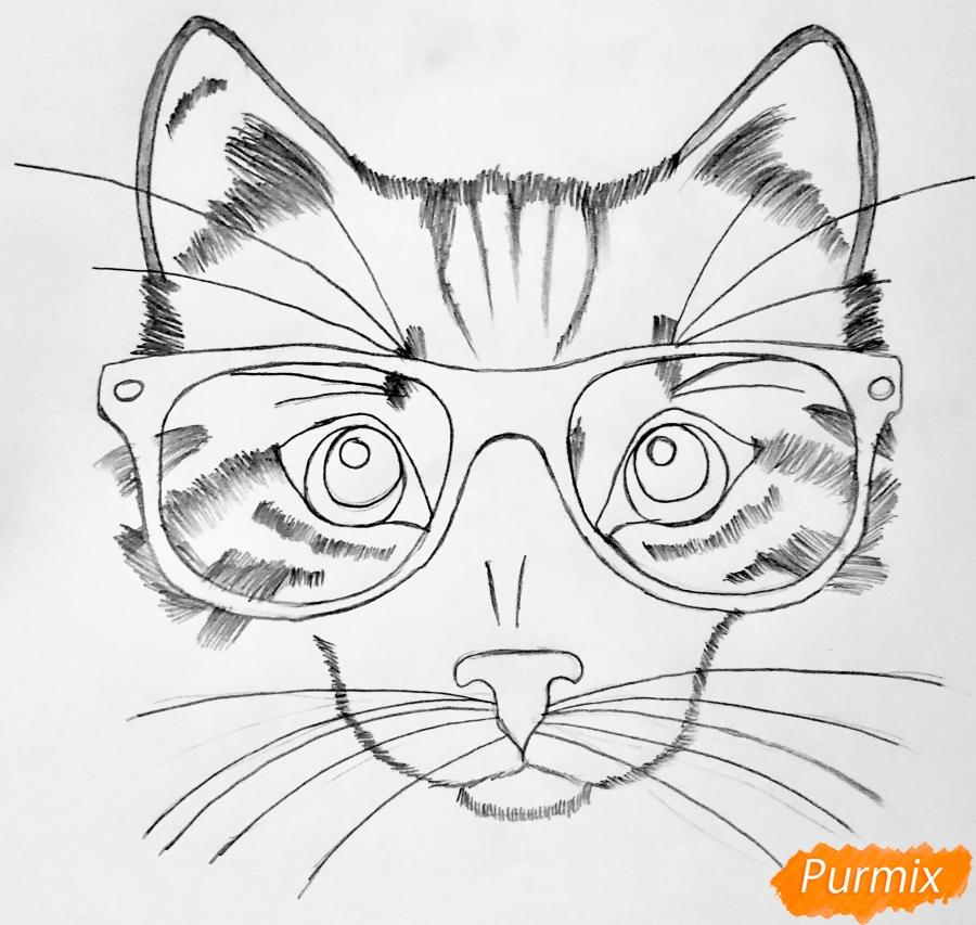 Рисуем портрет кошки в красных очках и с бантом - шаг 4