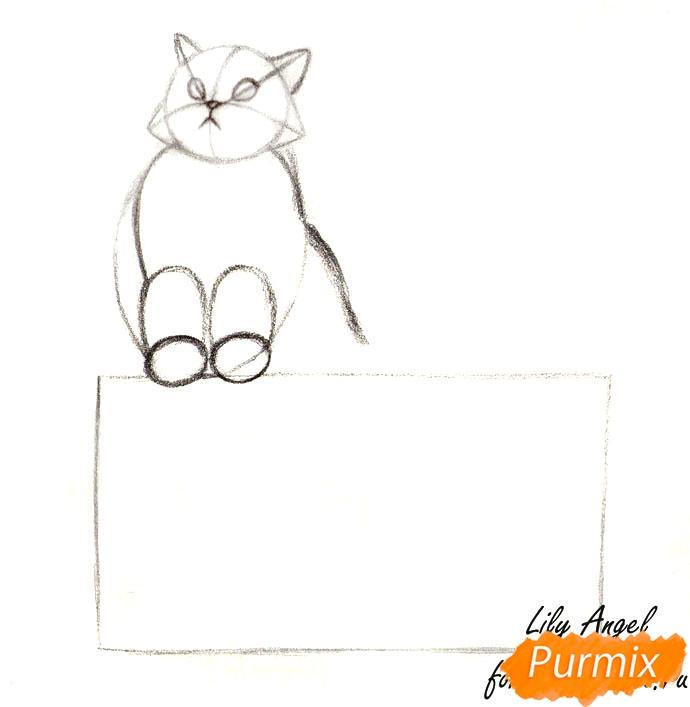 Рисуем котенка в коробке - шаг 2
