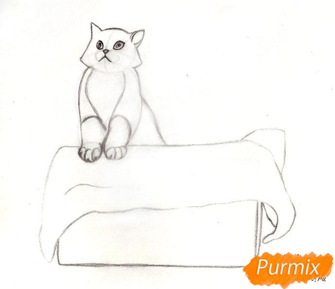 Рисуем котенка в коробке - шаг 4