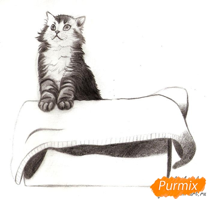 Рисуем котенка в коробке - шаг 6
