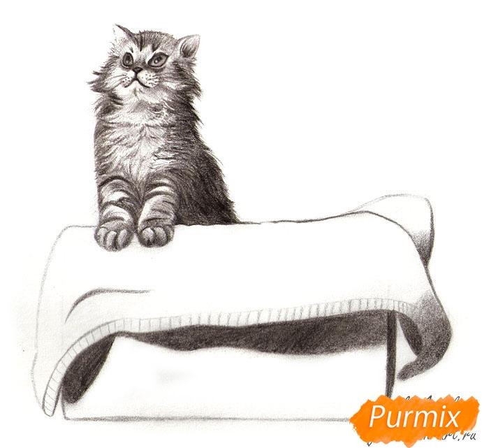 Рисуем котенка в коробке - шаг 7