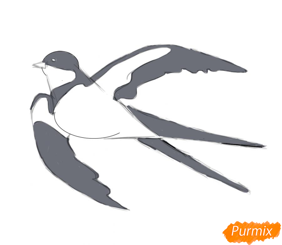 Рисуем Ласточку карандашами или акварелью - шаг 5