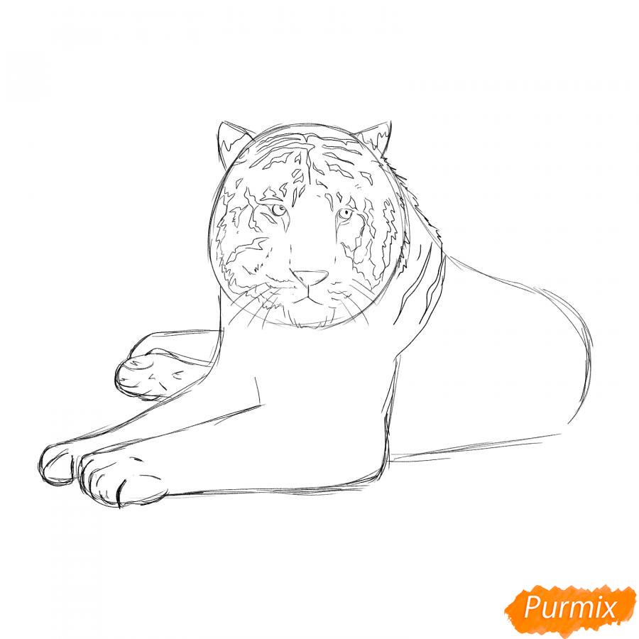 Рисуем лежащего черного тигра - шаг 4