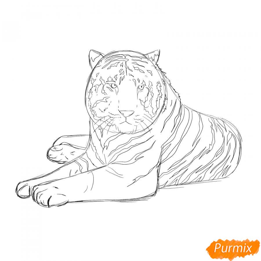Рисуем лежащего черного тигра - шаг 5