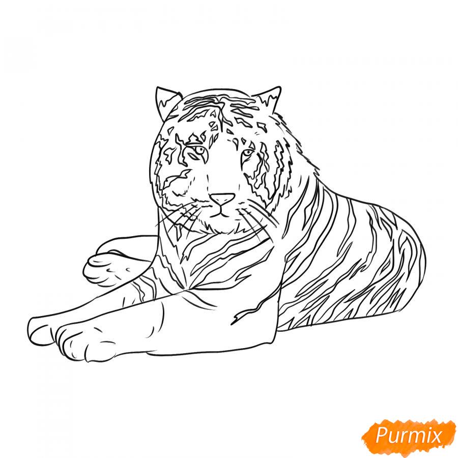 Рисуем лежащего черного тигра - шаг 6