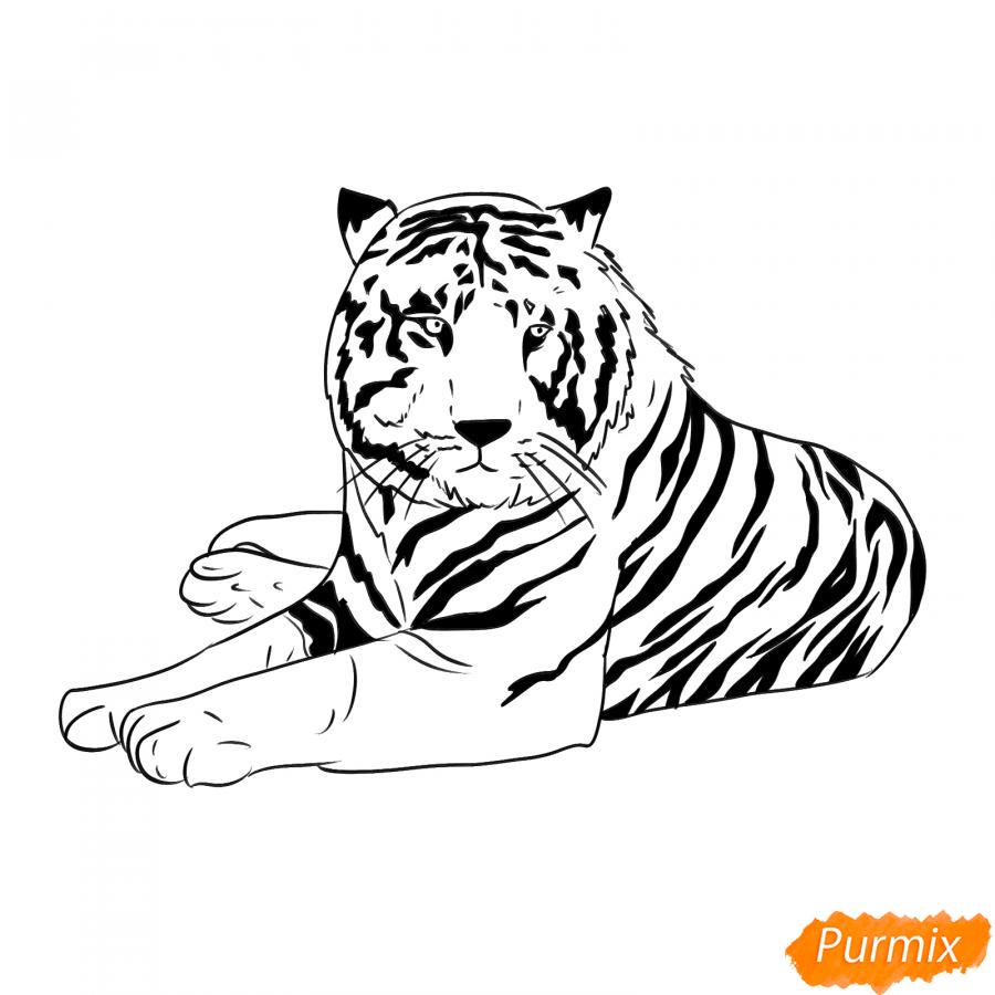 Рисуем лежащего черного тигра - шаг 7