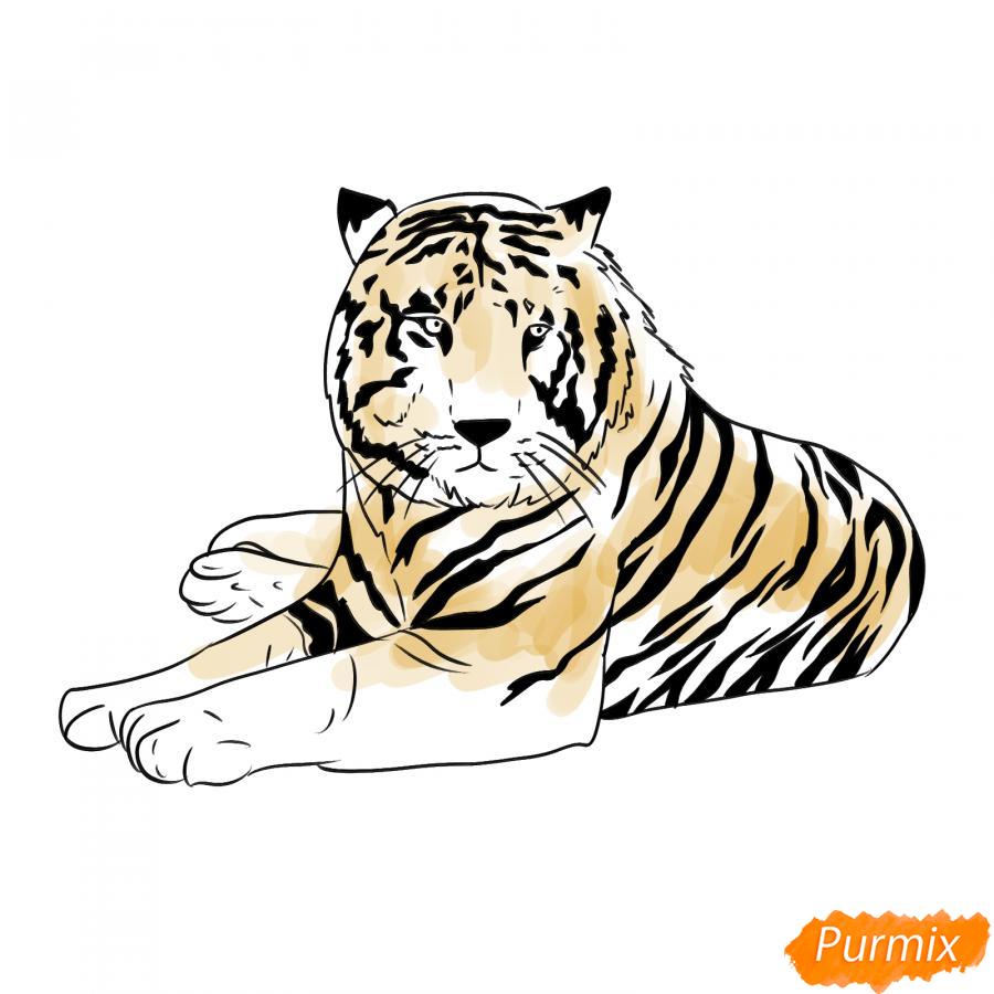 Рисуем лежащего черного тигра - шаг 8