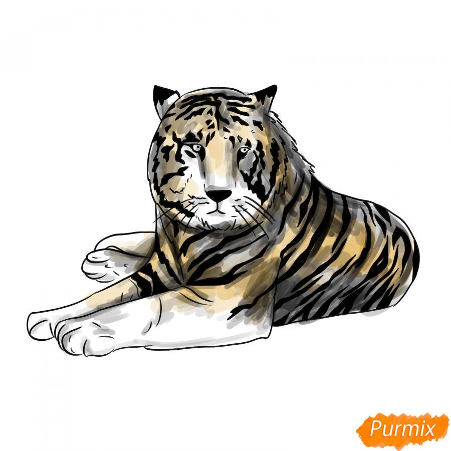 Рисуем лежащего черного тигра - шаг 9