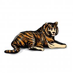 лежащего тигра