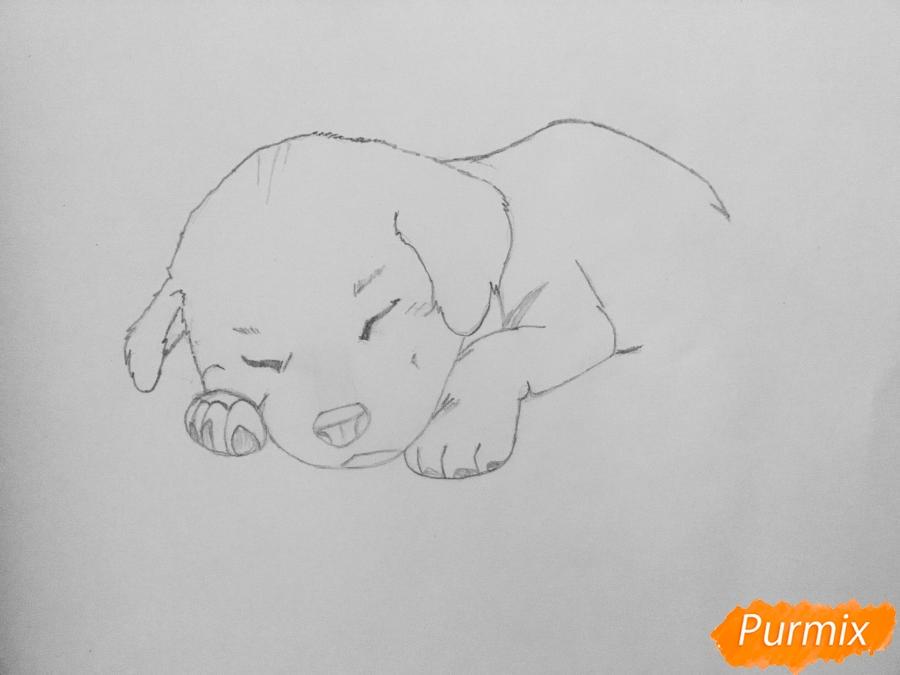 Рисуем  милого спящего щеночка возле чашки кофе - шаг 3