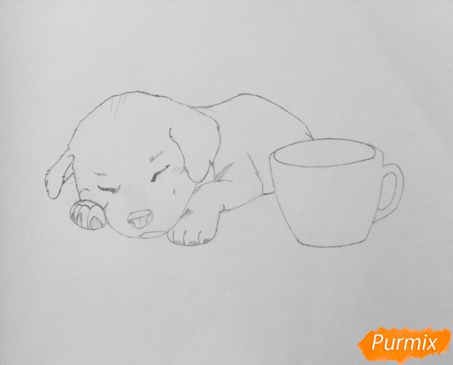 Рисуем  милого спящего щеночка возле чашки кофе - шаг 4