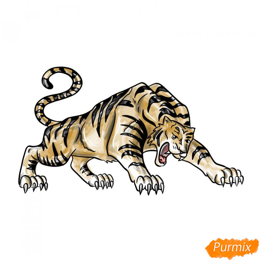 Рисуем рычащего тигра карандашами - шаг 10