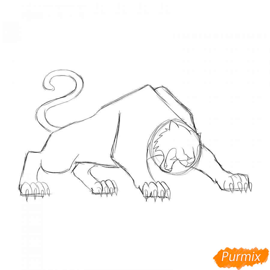 Рисуем рычащего тигра карандашами - шаг 3
