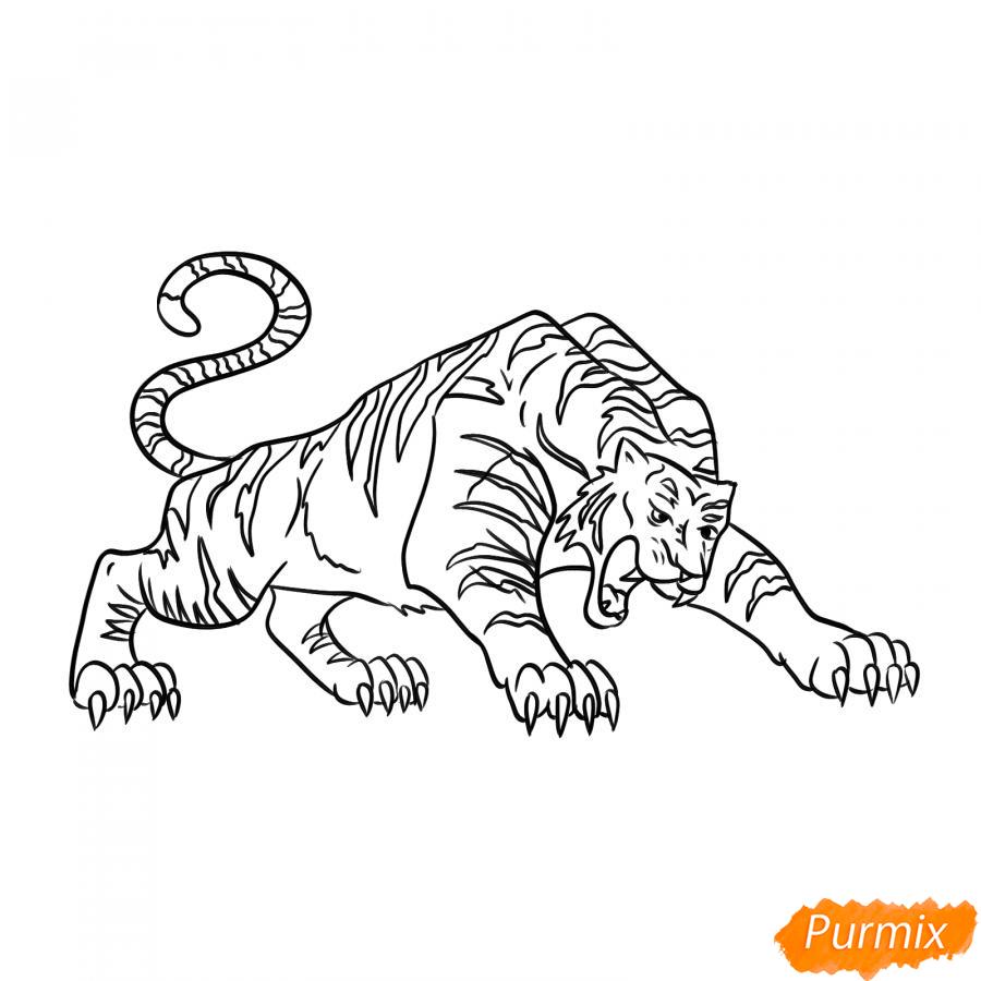 Рисуем рычащего тигра карандашами - шаг 6