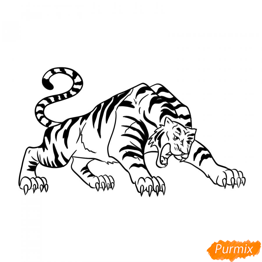 Рисуем рычащего тигра карандашами - шаг 7
