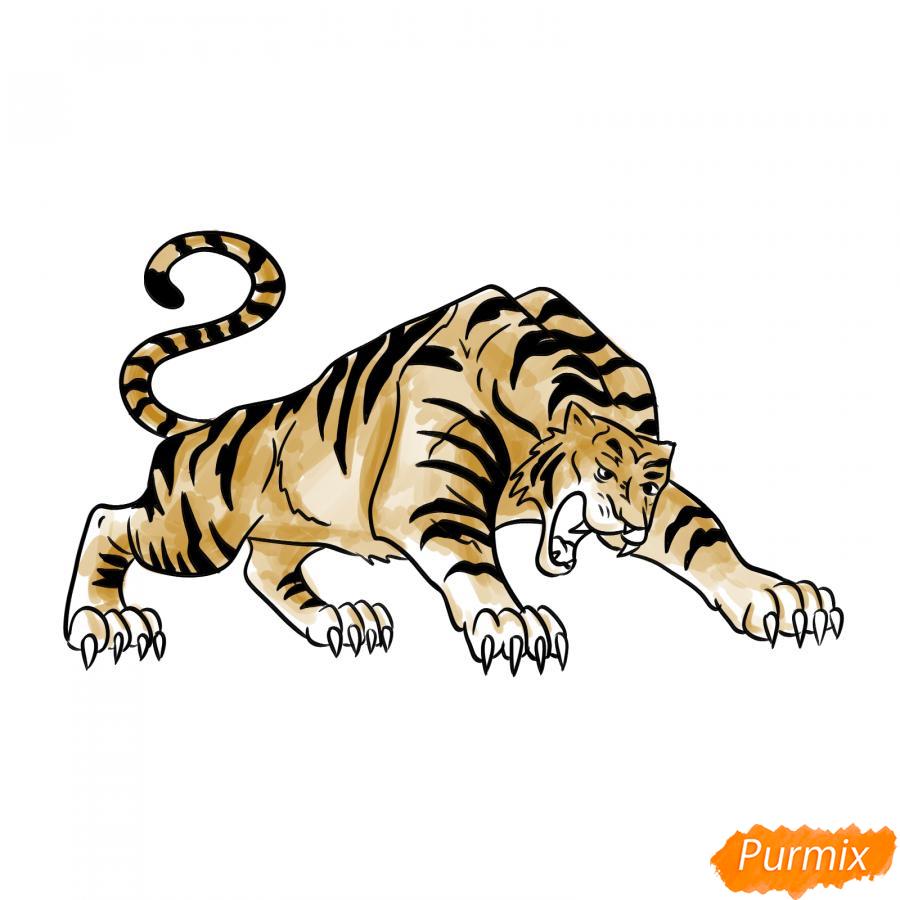 Рисуем рычащего тигра карандашами - шаг 8