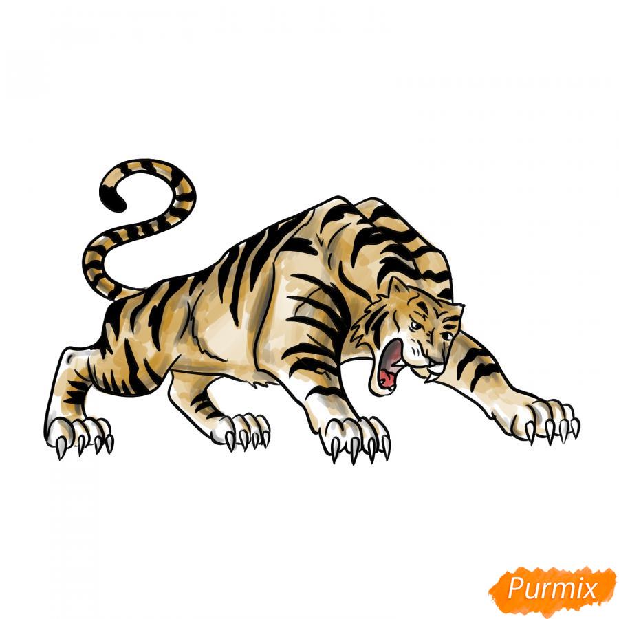 Рисуем рычащего тигра карандашами - шаг 9