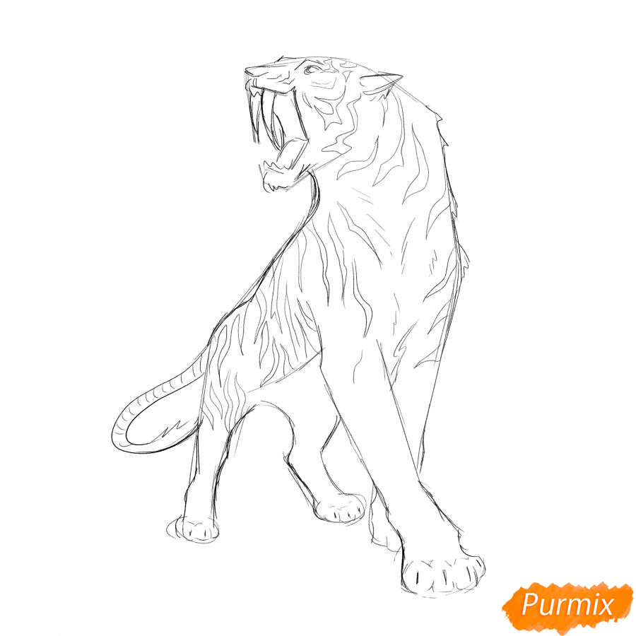 Рисуем саблезубого тигра карандашами - шаг 4