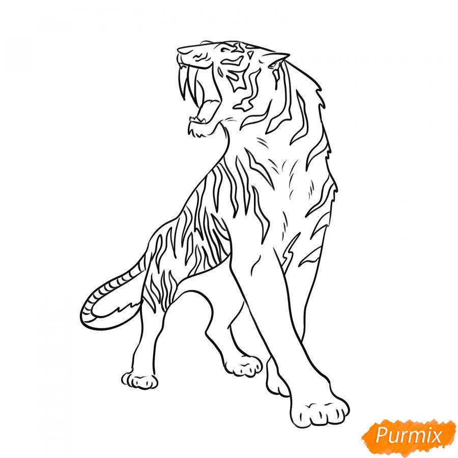 Рисуем саблезубого тигра карандашами - шаг 5