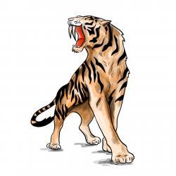 Фото саблезубого тигра