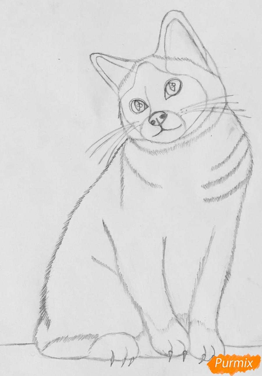 Рисуем сиамскую кошечку в мультяшном стиле цветными карандашами - шаг 5