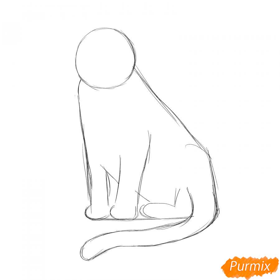Рисуем сидячего черного тигра - шаг 2