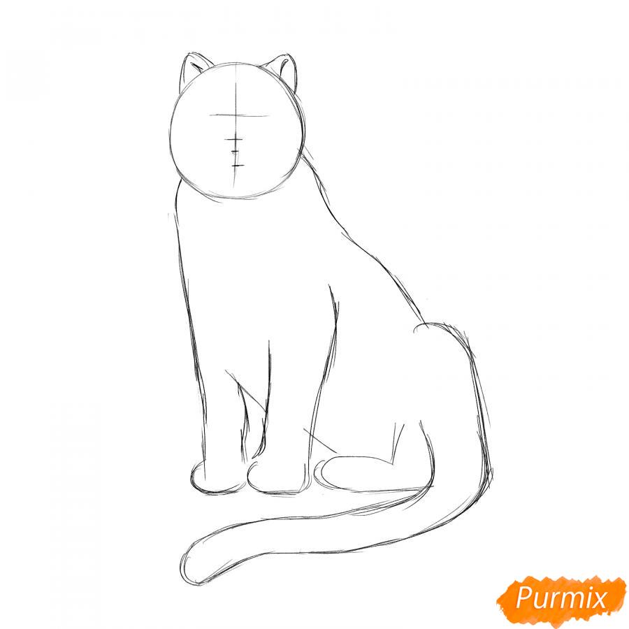 Рисуем сидячего черного тигра - шаг 3