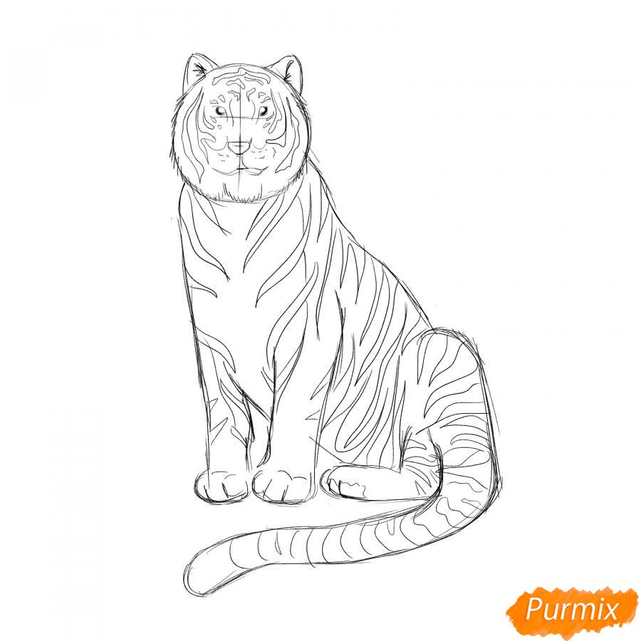 Рисуем сидячего черного тигра - шаг 5
