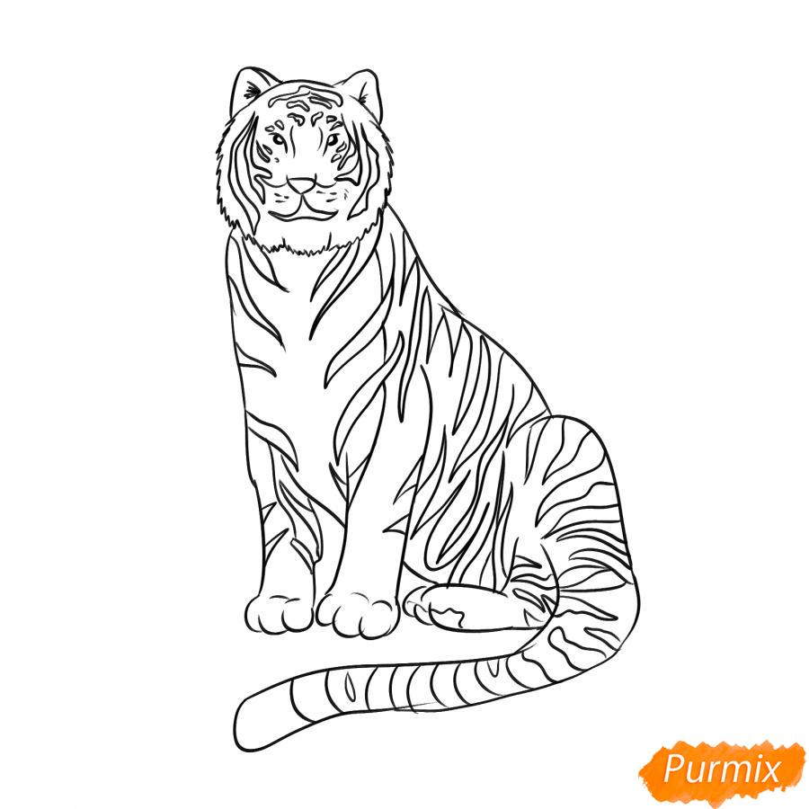 Рисуем сидячего черного тигра - шаг 6