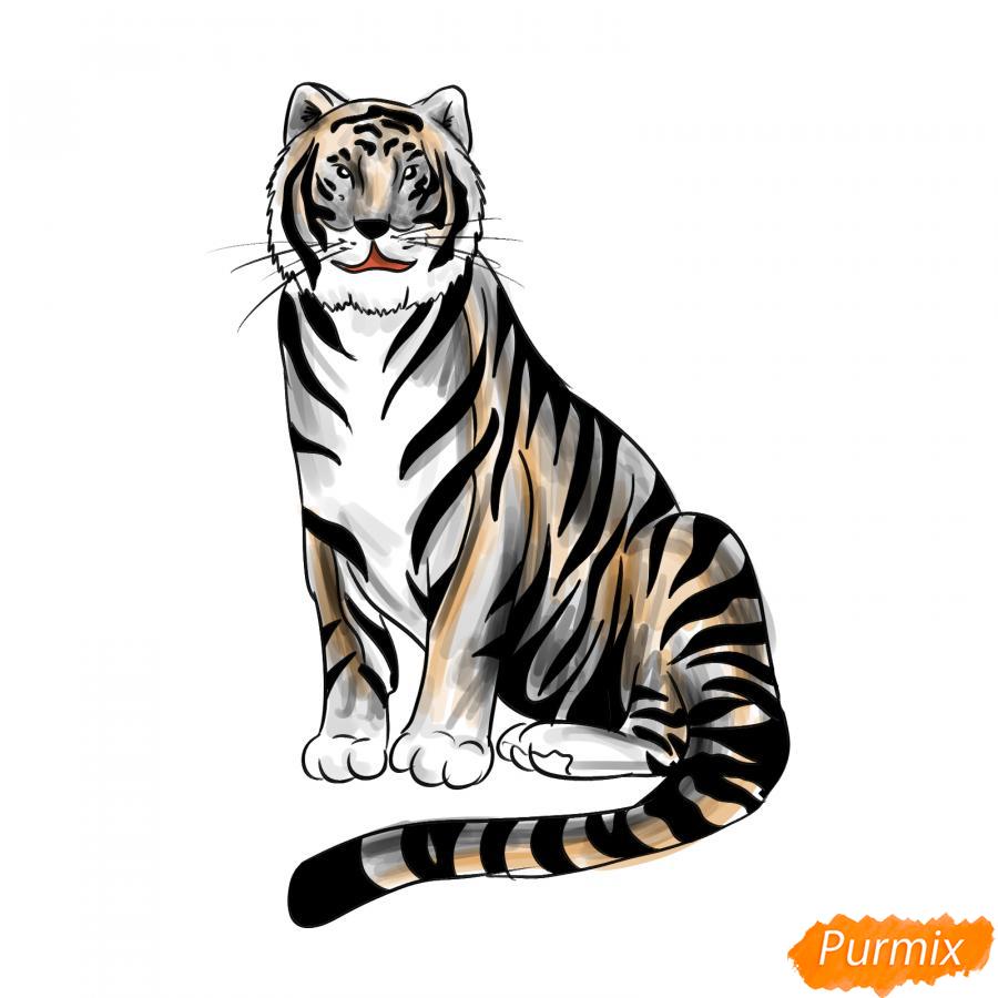 Рисуем сидячего черного тигра - шаг 9