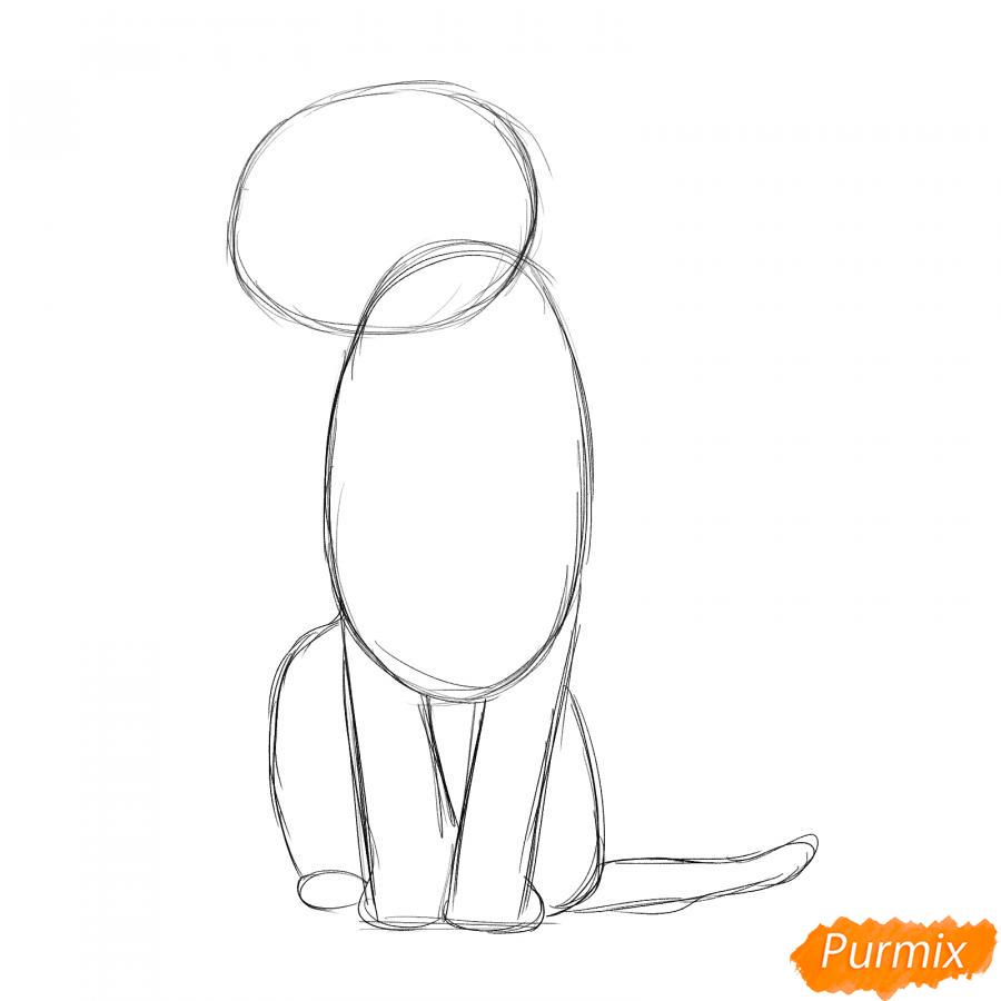 Рисуем сидящего тигра карандашами - шаг 2