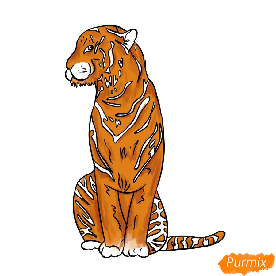 Рисуем сидящего тигра карандашами - шаг 7