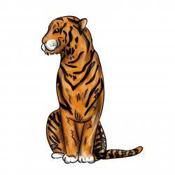 сидящего тигра