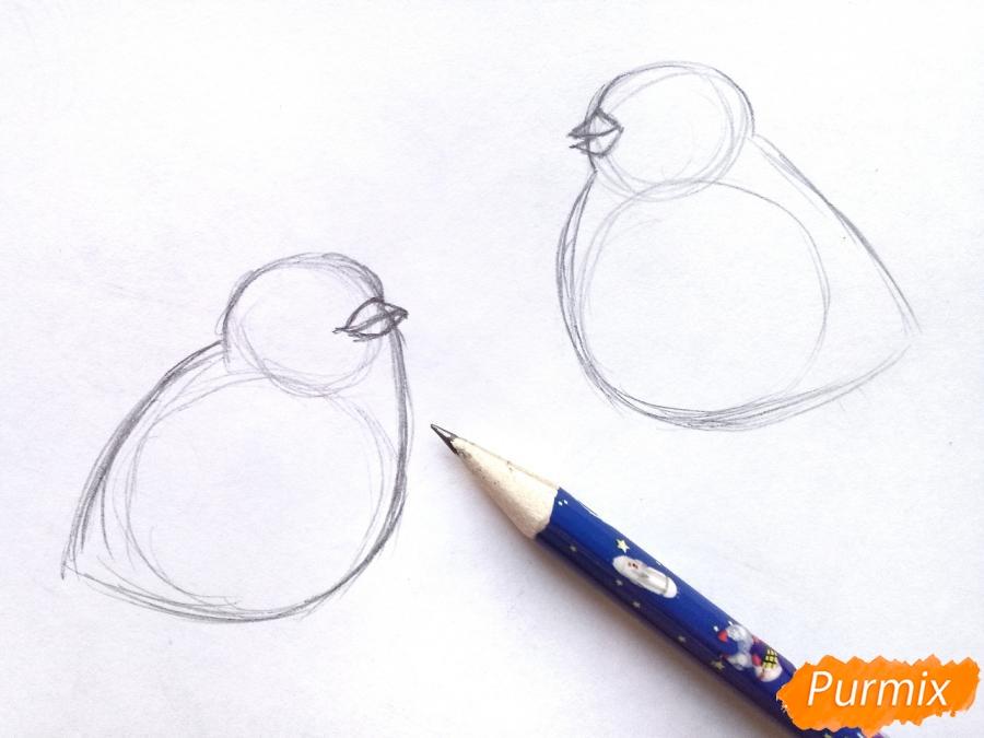 Рисуем снегирей на ветке зимой карандашами - шаг 2