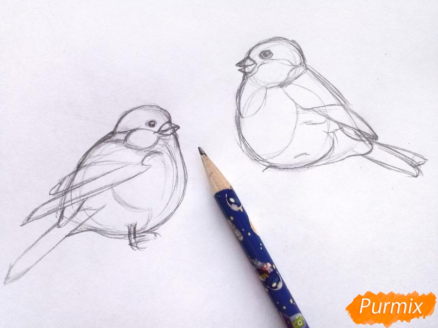 Рисуем снегирей на ветке зимой карандашами - шаг 3